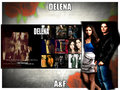 delena - damon-salvatore wallpaper