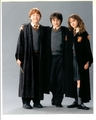trio - harry-ron-and-hermione photo