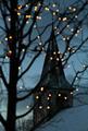 ★ Christmas ☆ - christmas photo