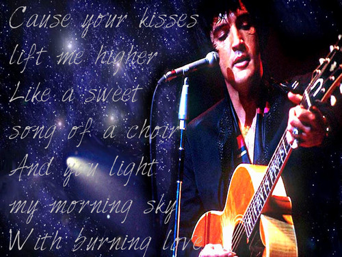 elvis presley fondo de pantalla containing a guitarist and a concierto entitled ★ Elvis ☆