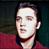 Elvis Presley photo containing a portrait called ★ Elvis ☆