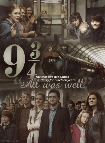 ~Harry Potter Forever~