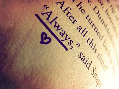 ~Harry Potter Forever~