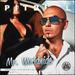 ★ Pitbull ☆ - pitbull-rapper icon