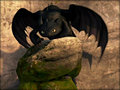 ★ Toothless ☆  - how-to-train-your-dragon wallpaper