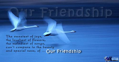 ~friendship_quote~