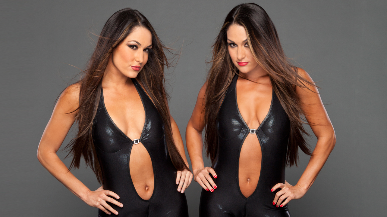 Sexy pictures of the bella twins
