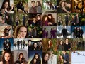 BD 2  - twilight-series photo