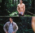 ;) - twilight-series photo