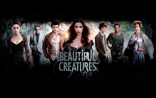 Beautiful Creatures 바탕화면