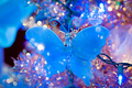 Blue Christmas butterfly for my fairy sister - yorkshire_rose photo