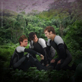 Catching Fire - peeta-mellark photo