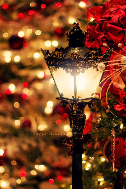 Shprehni ndjenjat tuaja me nje Foto: Christmas-christmas-33061176-427-640