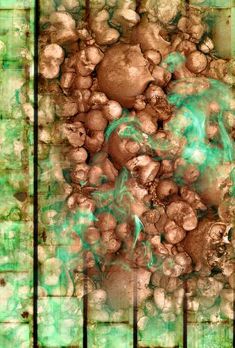 Copper Bones