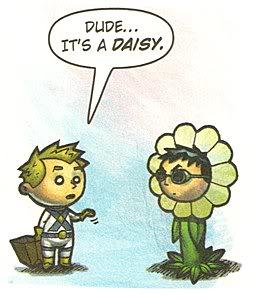Dude...Daisy