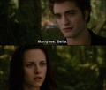 Edward Cullen - edward-cullens-future-wives photo
