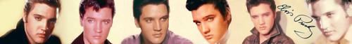 Elvis Banner III