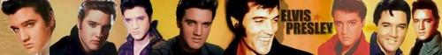 Elvis Banner