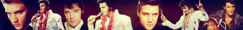 Elvis banner #2