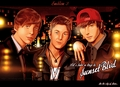 Emblem3 on deviantART - emblem-3 fan art