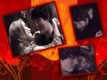 Fabina collage