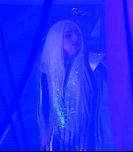 Gaga at The Rolling Stones' concert before performing