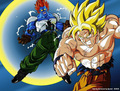 Goku vs Super Android 13 - dragon-ball-z photo