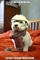 Hipster Puppy - puppies fan art