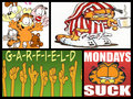 I l'amour Garfield