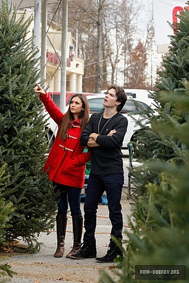 Ian and Nina Shopping for krisimasi trees