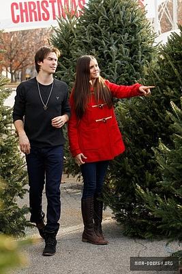 Ian and Nina Shopping for krisimasi trees