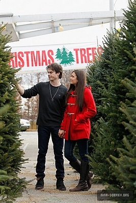 Ian and Nina Shopping for giáng sinh trees