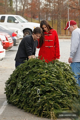 Ian and Nina Shopping for natal trees