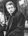 Jimmy - james-dean photo