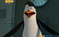 Kowalski <3 (Fangirl Alert!)