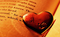Love Wallpapers - love wallpaper