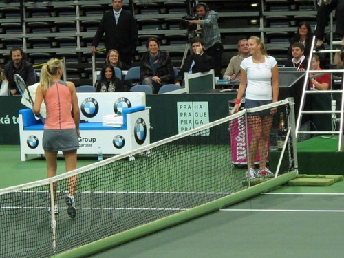 Maria Sharapova achtergrond with a tennis pro, a tennis racket, and a tennis player titled Maria and Petra hot