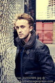 Matt Holyoak (2012)  - tom-felton photo