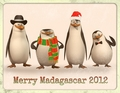 Merry Madagascar 2012 - penguins-of-madagascar photo