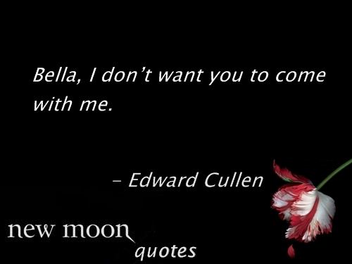 New moon frases 81-100