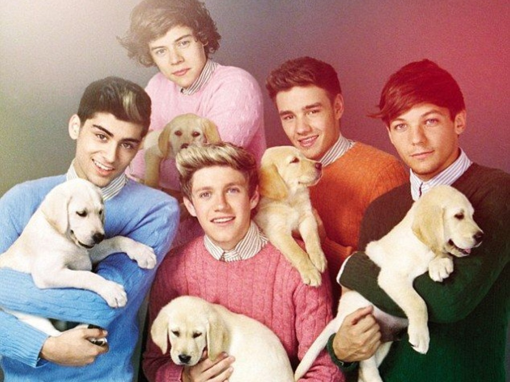 One Direction One Direction Wallpaper   One Direction Wallpaper