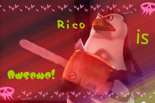 Rico is awesome!
