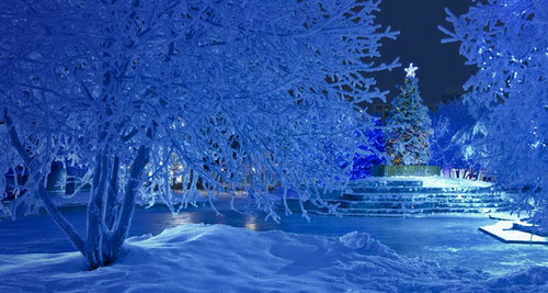 Snowy Blue Christmas