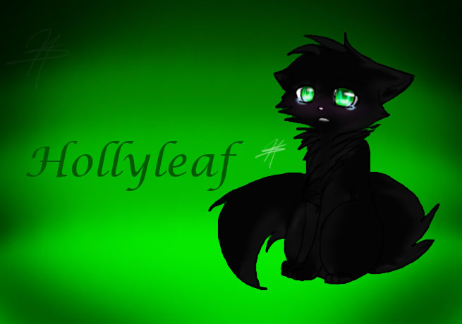 Free Warrior Cats Wallpaper Hollyleaf