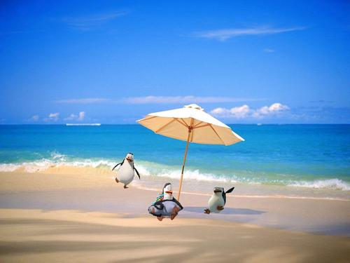 The 海滩 Surprise