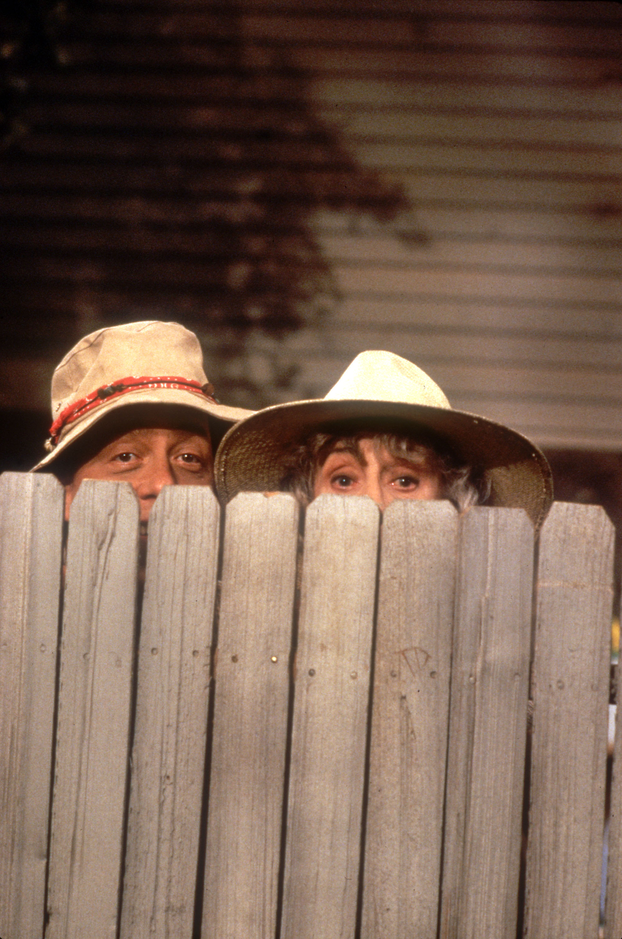 Perfect Wilson Home Improvement TV Show 1988 x 3000 · 746 kB · jpeg