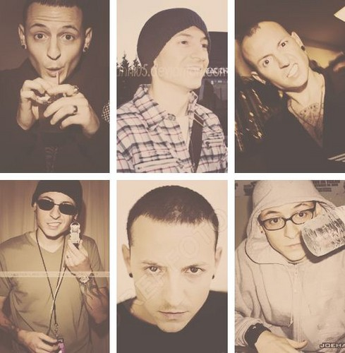 Chester Bennington wallpaper possibly containing a portrait entitled chazy!!