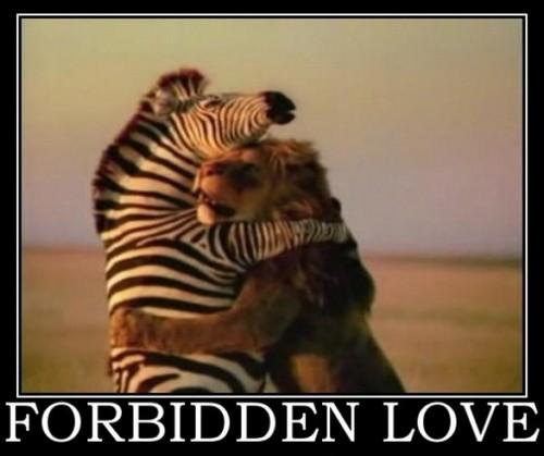 forbiden Liebe