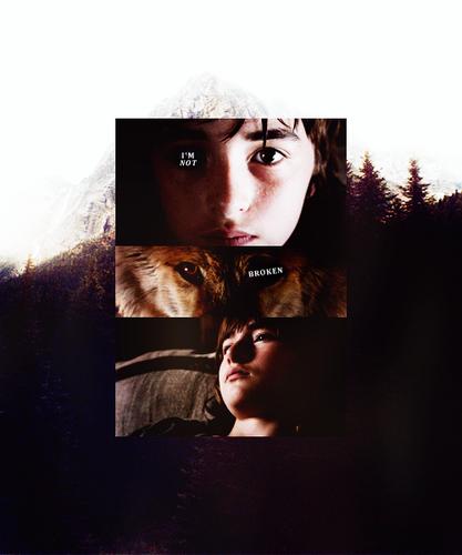 Bran Stark & Summer