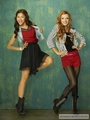 shake it up! - shake-it-up photo